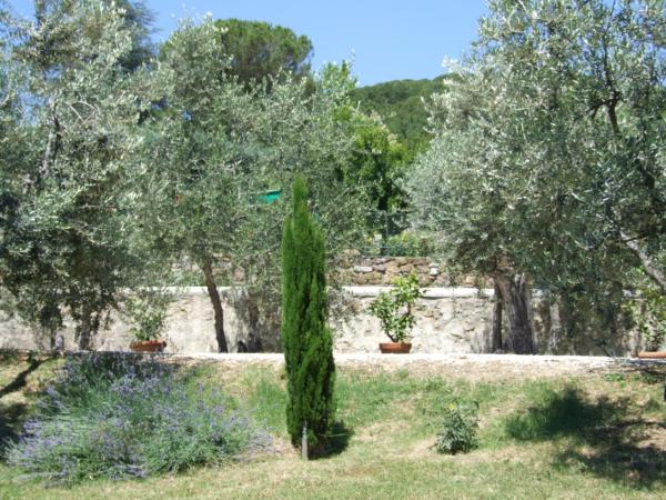 Bed and Breakfast Villa Nobili the garden 2