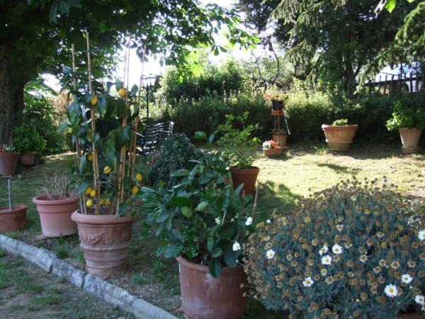 Villa Nobili Giardino