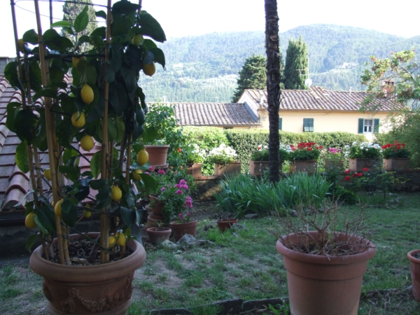 Giardino DSCF2490